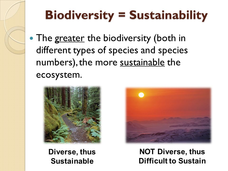 The greater the biodiversity (both in different types of species and species numbers), the more sustainable the ecosystem.