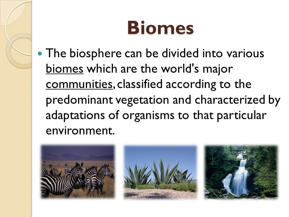 The biosphere can be divided into various biomes which are the world s major communities, classified according to the predominant vegetation and characterized by adaptations of organisms to that particular environment.