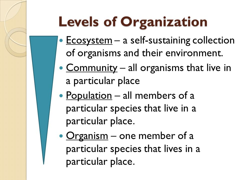 Levels of Organization Ecosystem – a self-sustaining collection of organisms and their environment.