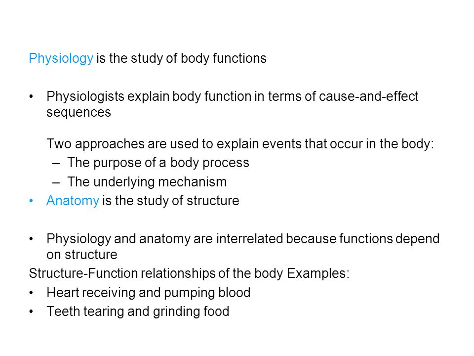 Perfecto Why Is It Important To Study Anatomy And Physiology ...