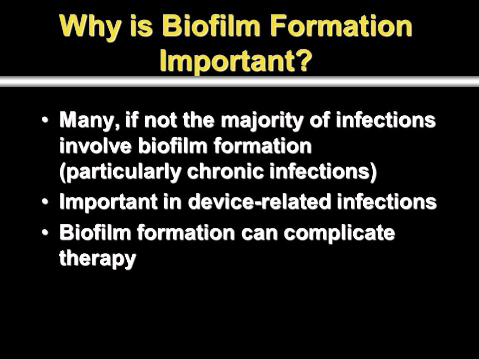 Multi-species Biofilms  Biofilms A biofilm is a community of