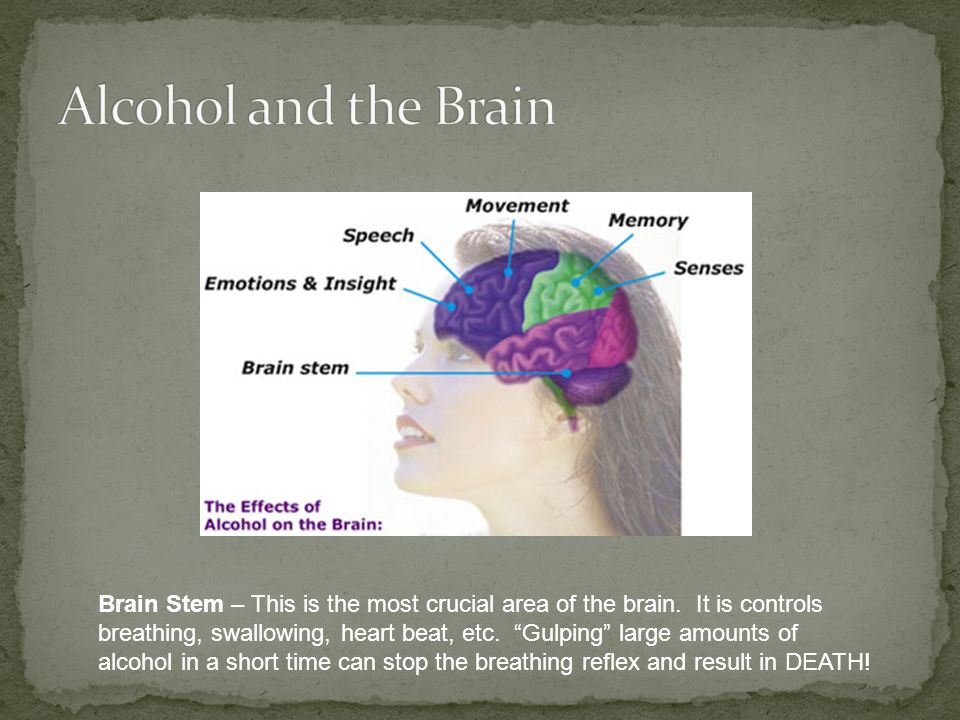 Brain Stem – This is the most crucial area of the brain.