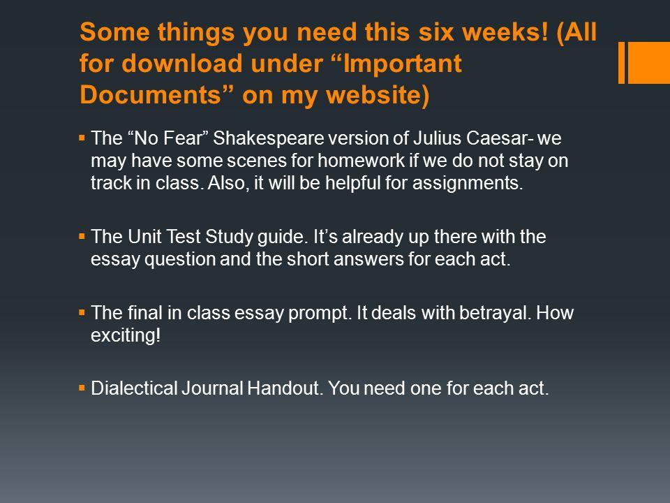julius caesar essay questions answers