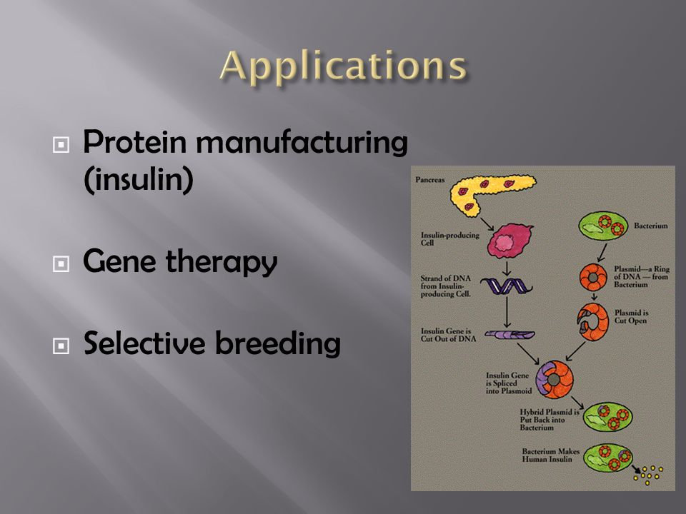  Protein manufacturing (insulin)  Gene therapy  Selective breeding