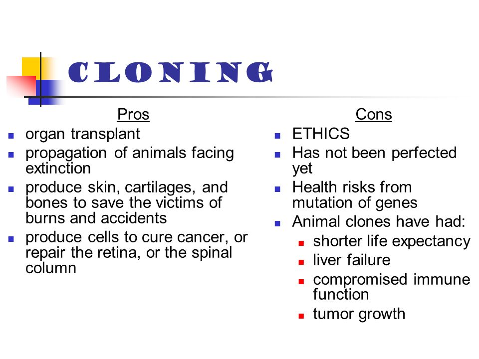 cloning debate pros and cons