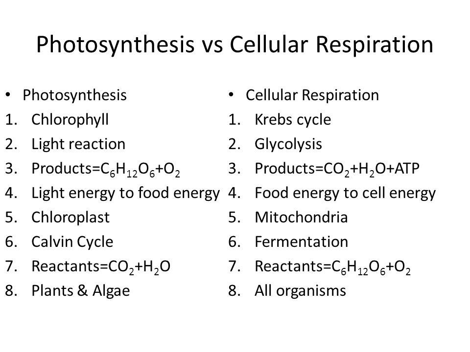 Cellular Respiration Vs Photosynthesis Diagram Wiring Diagram