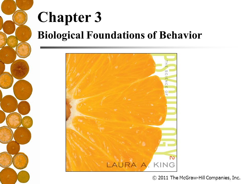 © 2011 The McGraw-Hill Companies, Inc. Chapter 3 Biological Foundations of Behavior