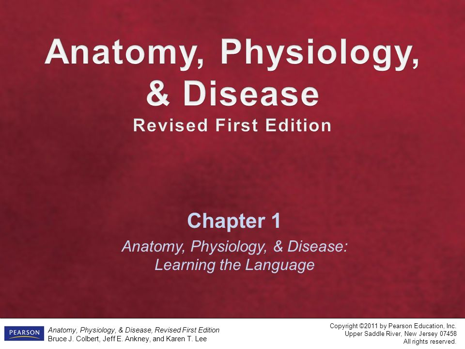 Anatomy, Physiology, & Disease, Revised First Edition Bruce J ...