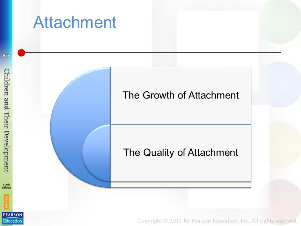 Attachment The Growth of Attachment The Quality of Attachment