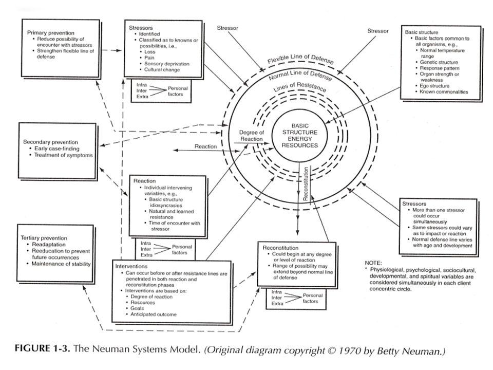 betty neuman systems model theory