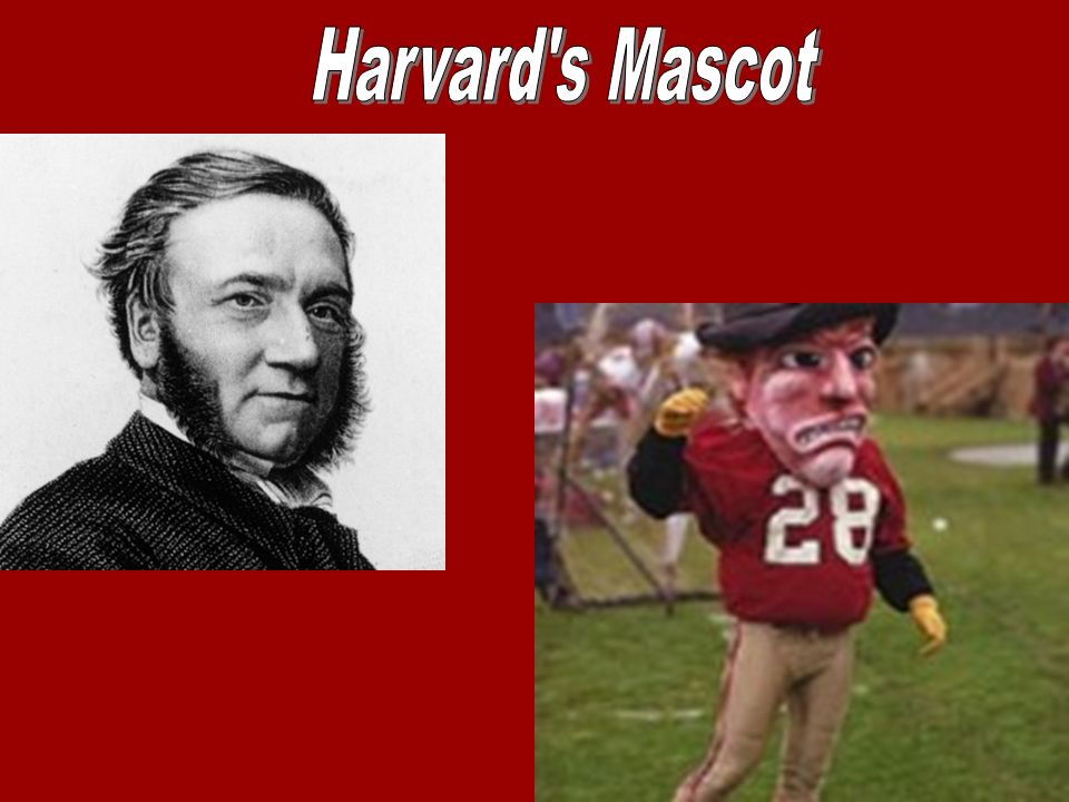 4 Harvard University Is Located In Cambridge Massachusetts And Only A Short Distance Away From Boston MA The Population Of 105162