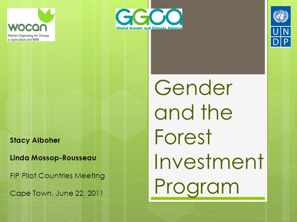 Gender and the Forest Investment Program Stacy Alboher Linda Mossop-Rousseau FIP Pilot Countries Meeting Cape Town, June 22, 2011