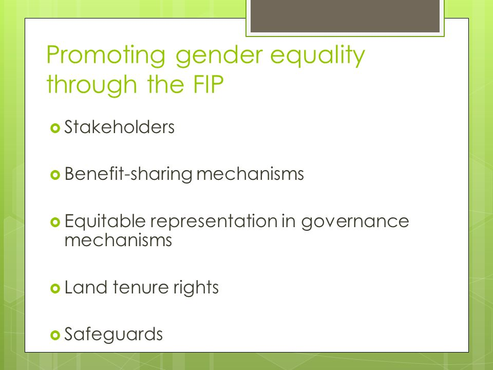 Promoting gender equality through the FIP  Stakeholders  Benefit-sharing mechanisms  Equitable representation in governance mechanisms  Land tenure rights  Safeguards