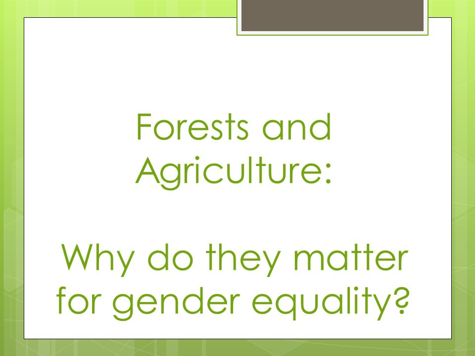 Forests and Agriculture: Why do they matter for gender equality