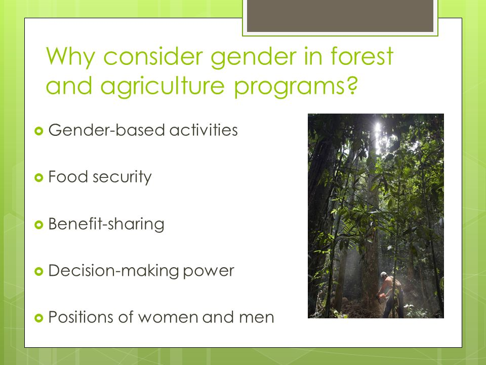 Why consider gender in forest and agriculture programs.