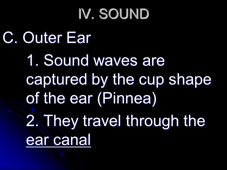 IV. SOUND C. Outer Ear 1. Sound waves are captured by the cup shape of the ear (Pinnea) 2.