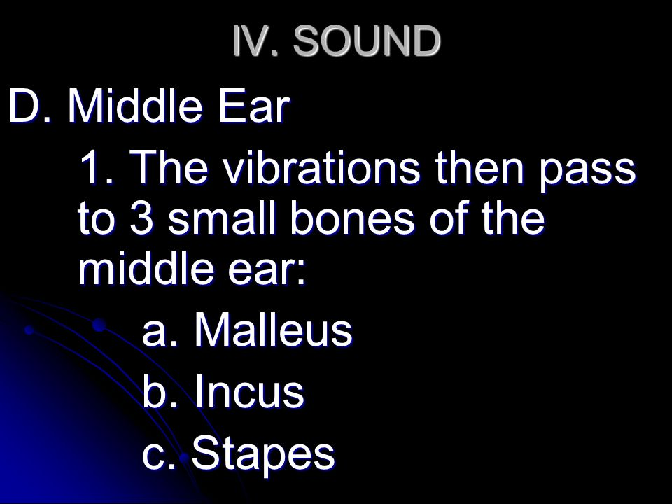 IV. SOUND D. Middle Ear 1. The vibrations then pass to 3 small bones of the middle ear: a.
