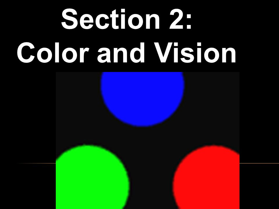 Section 2: Color and Vision