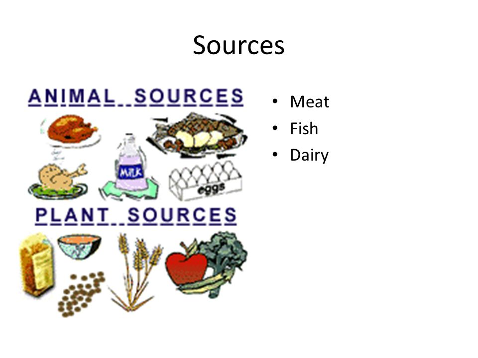 Sources Meat Fish Dairy