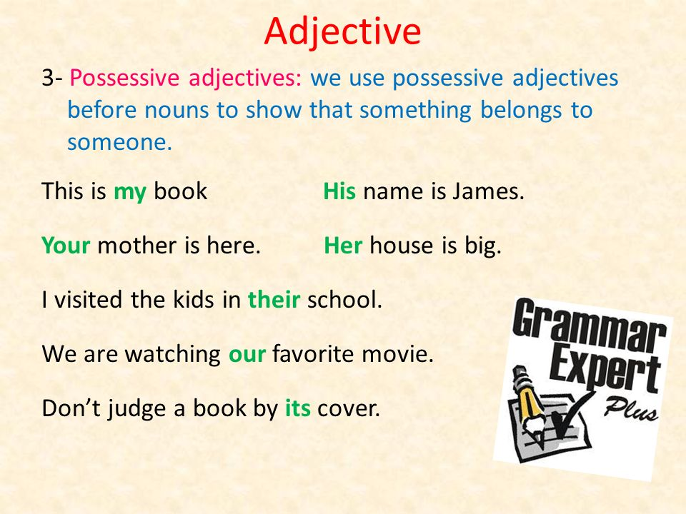 Adjective 3- Possessive adjectives: we use possessive adjectives before nouns to show that something belongs to someone.