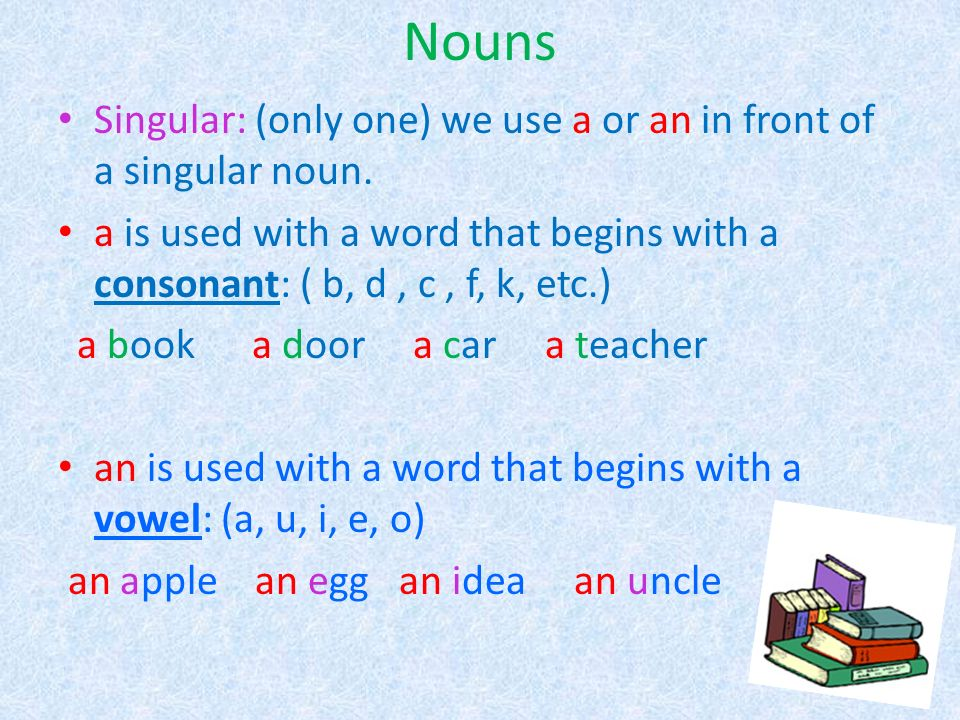 Nouns Singular: (only one) we use a or an in front of a singular noun.