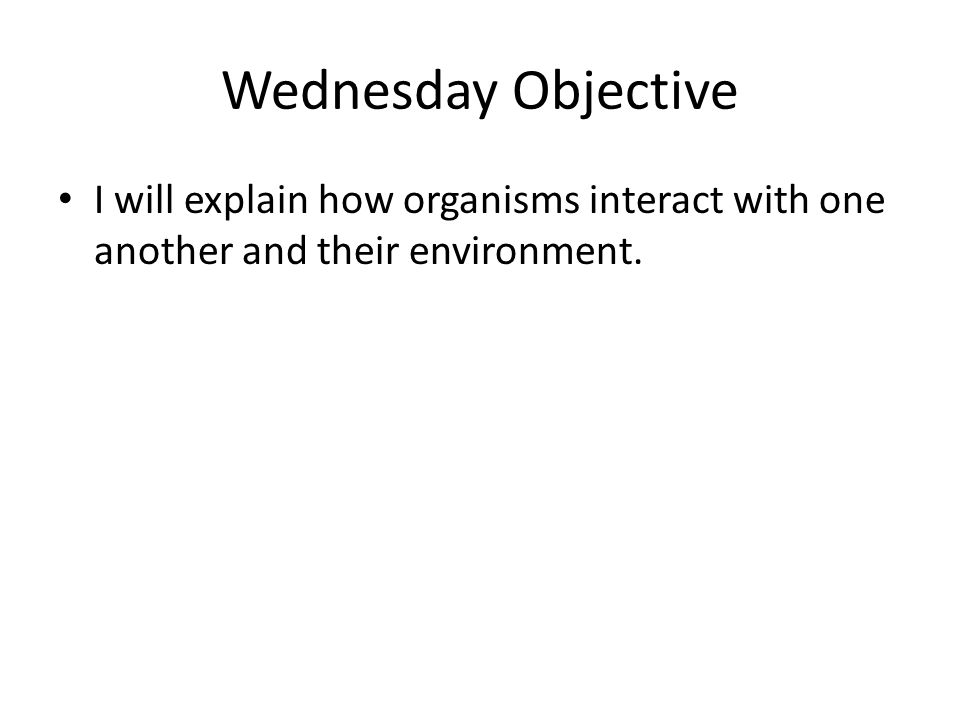 Wednesday Objective I will explain how organisms interact with one another and their environment.