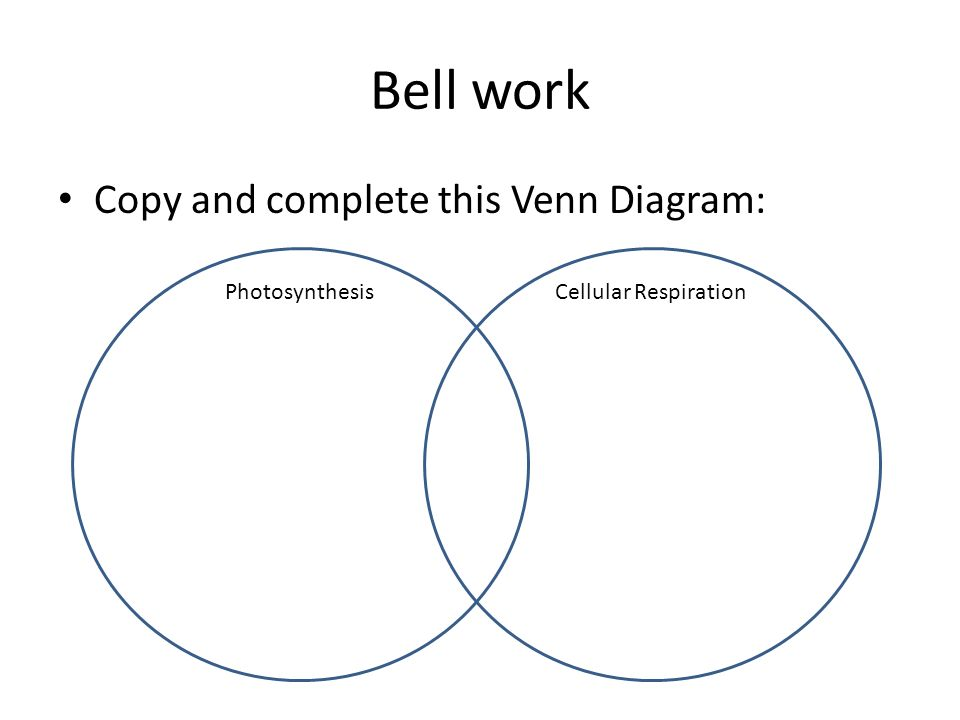 Bell work Copy and complete this Venn Diagram: PhotosynthesisCellular Respiration