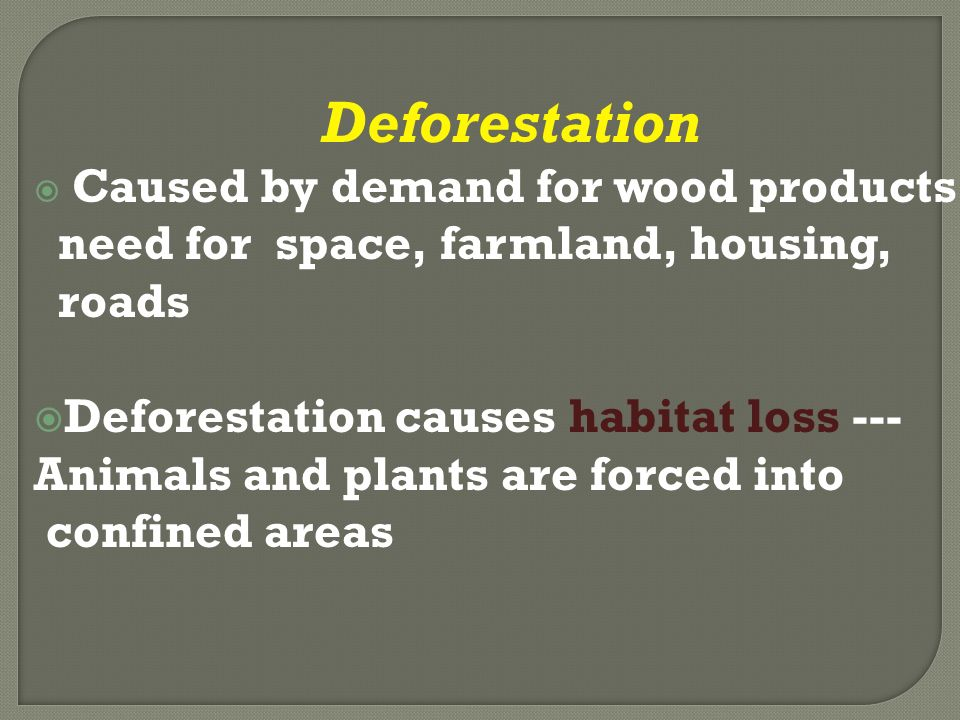 Deforestation  Caused by demand for wood products, need for space, farmland, housing, roads  Deforestation causes habitat loss --- Animals and plants are forced into confined areas