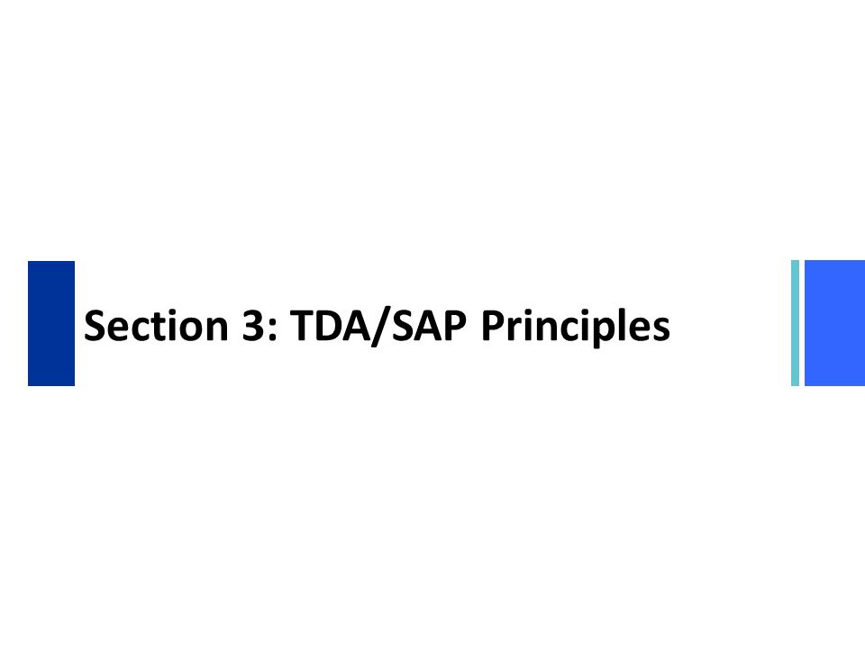 Section 3: TDA/SAP Principles