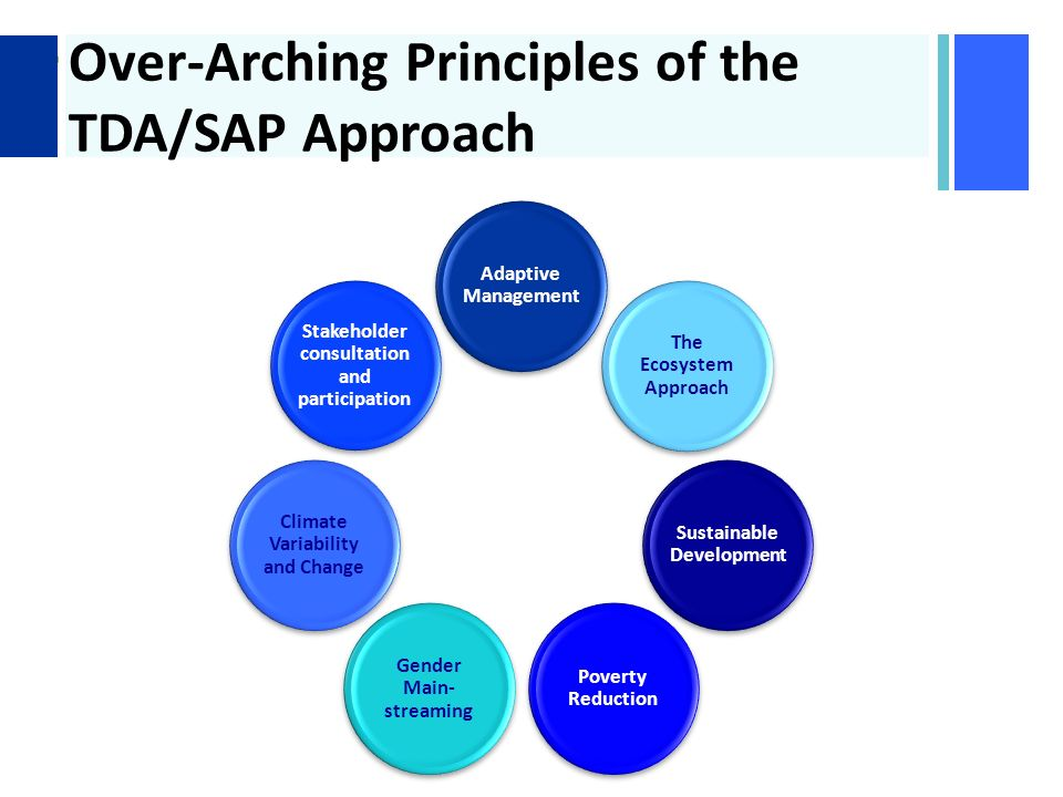 + Over-Arching Principles of the TDA/SAP Approach Adaptive Management The Ecosystem Approach Sustainable Development Poverty Reduction Gender Main- streaming Climate Variability and Change Stakeholder consultation and participation