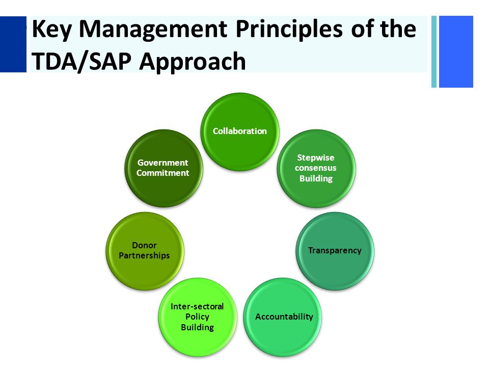 + Key Management Principles of the TDA/SAP Approach Stepwise consensus Building TransparencyAccountability Inter-sectoral Policy Building Donor Partnerships Government Commitment Collaboration
