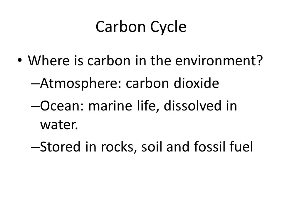 Carbon Cycle Where is carbon in the environment.