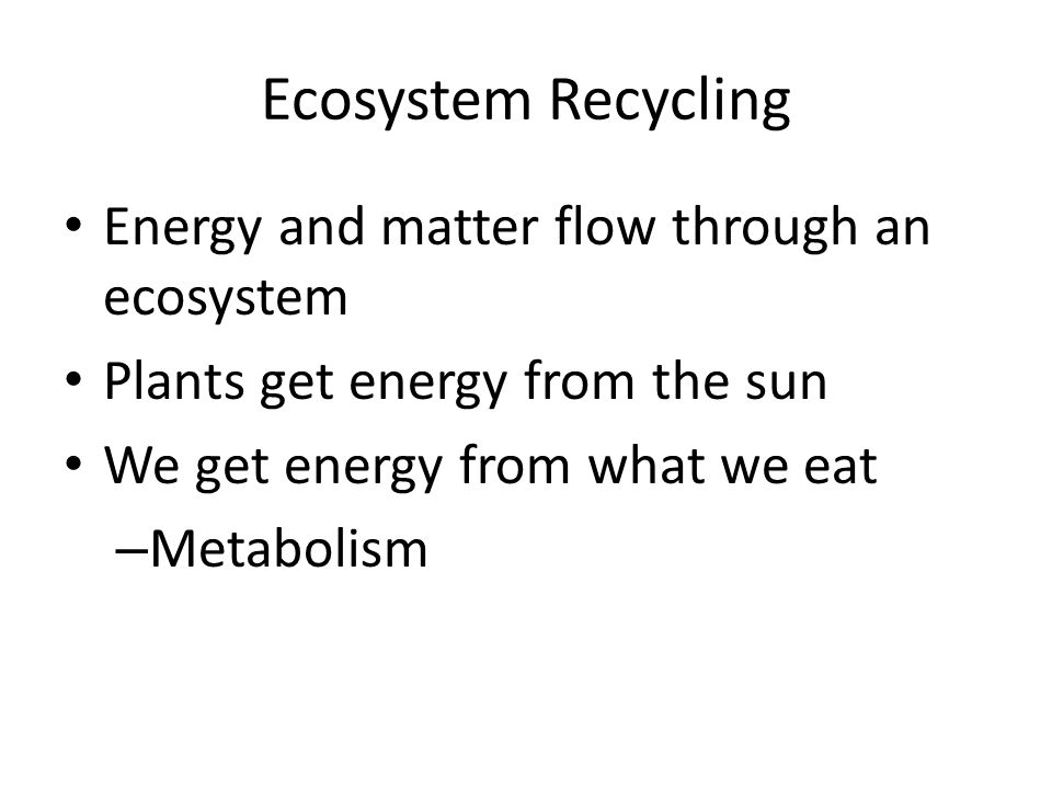 Ecosystem Recycling Energy and matter flow through an ecosystem Plants get energy from the sun We get energy from what we eat – Metabolism