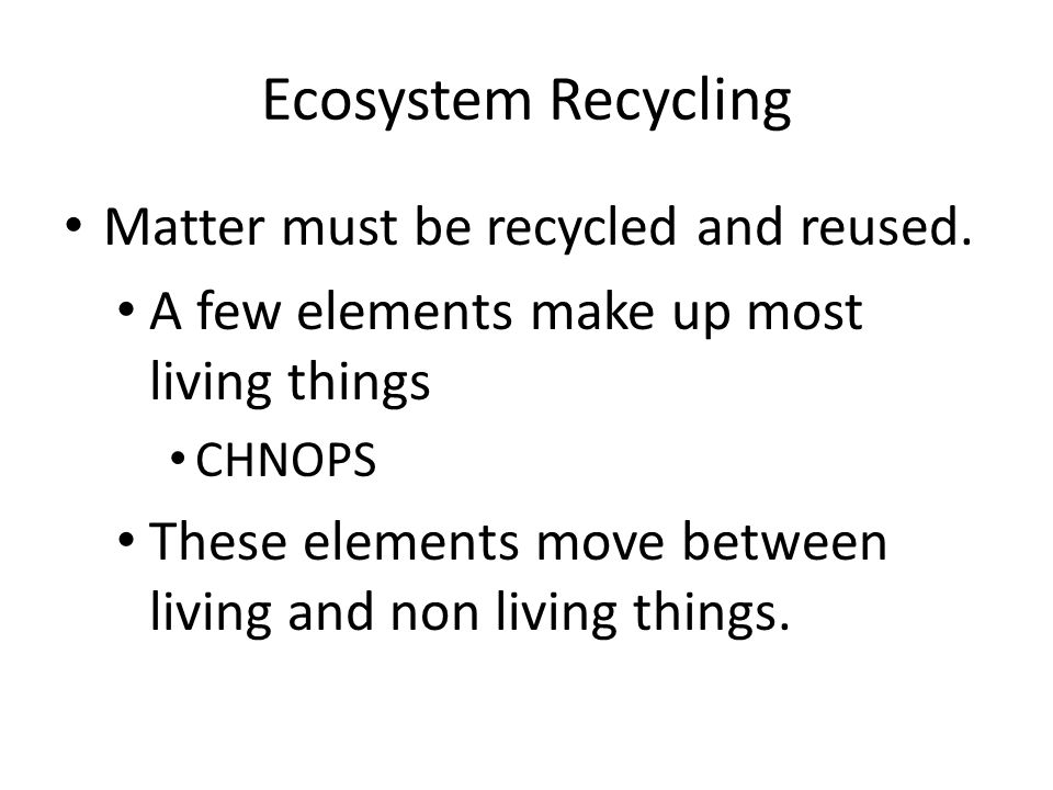Ecosystem Recycling Matter must be recycled and reused.