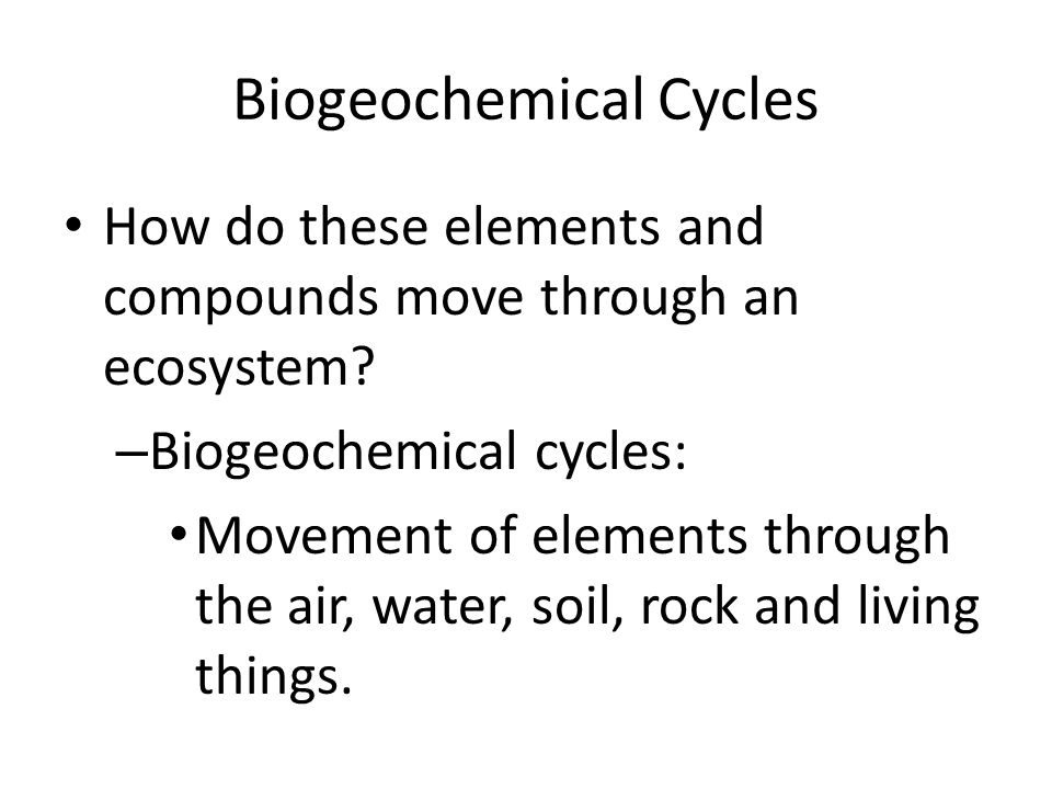 Biogeochemical Cycles How do these elements and compounds move through an ecosystem.