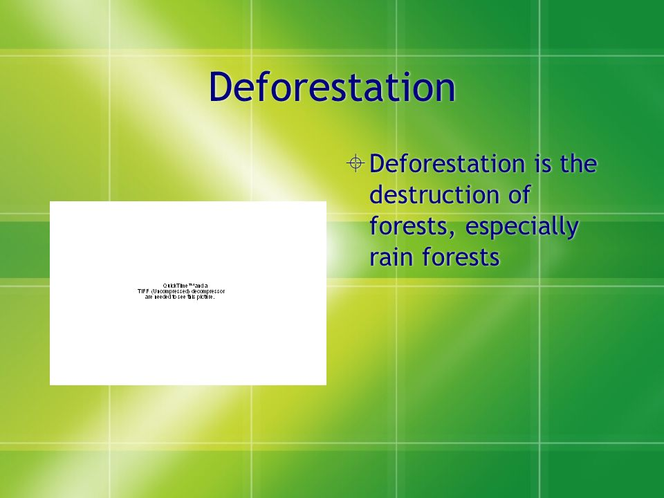 Deforestation  Deforestation is the destruction of forests, especially rain forests