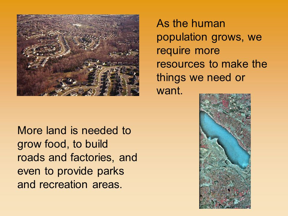 More land is needed to grow food, to build roads and factories, and even to provide parks and recreation areas.