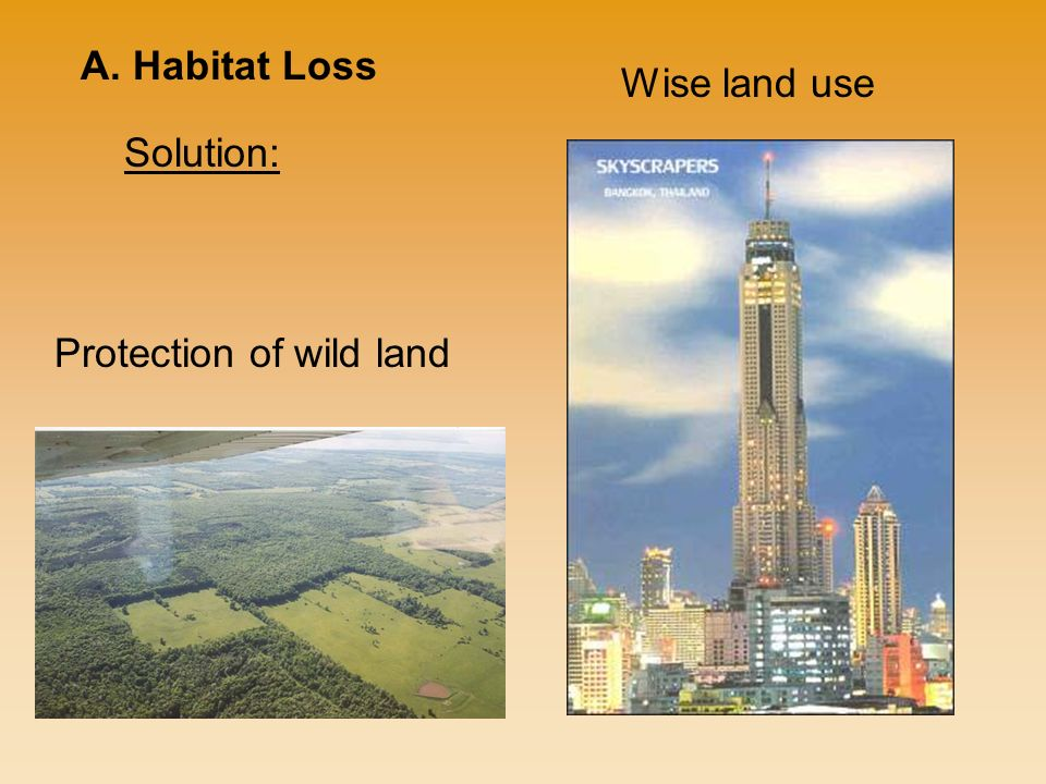 Solution: A. Habitat Loss Protection of wild land Wise land use