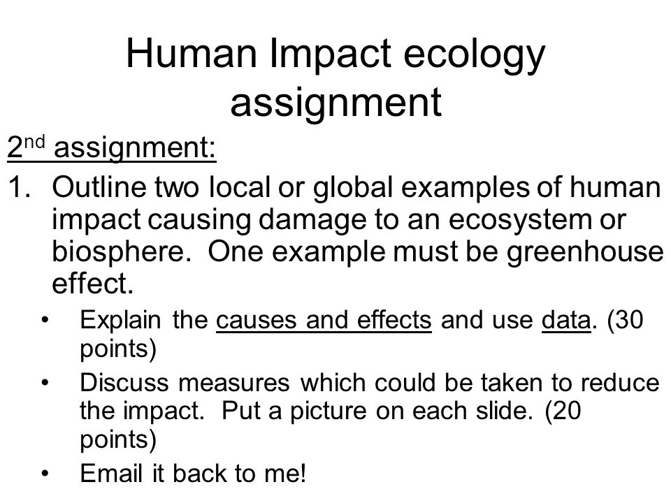 assignment outline example