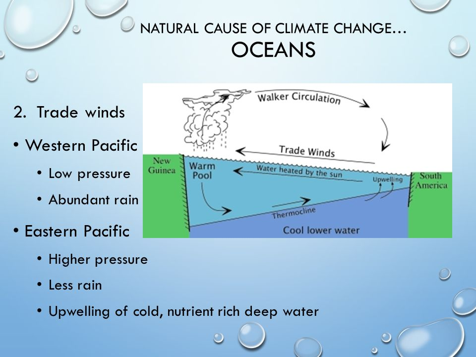 NATURAL CAUSE OF CLIMATE CHANGE… OCEANS 1.Thermohaline circulation Global conveyor belt Water freezes Salt stays in water Holds more nutrients More dense….