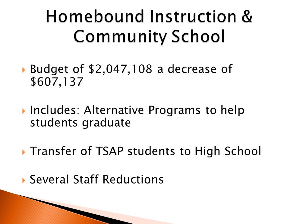  Budget of $2,047,108 a decrease of $607,137  Includes: Alternative Programs to help students graduate  Transfer of TSAP students to High School  Several Staff Reductions