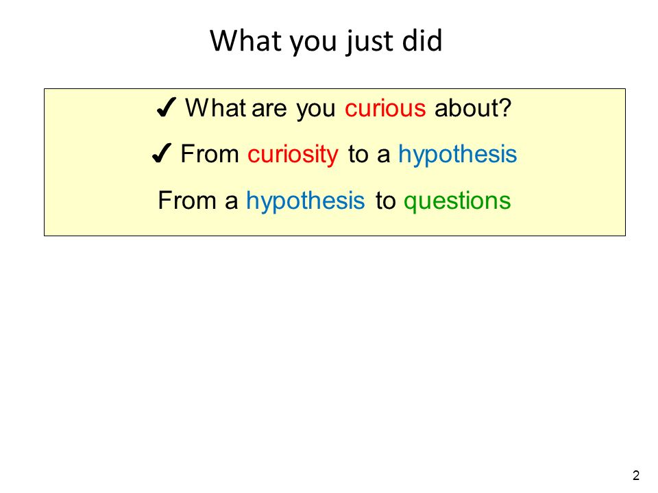 what are you curious about