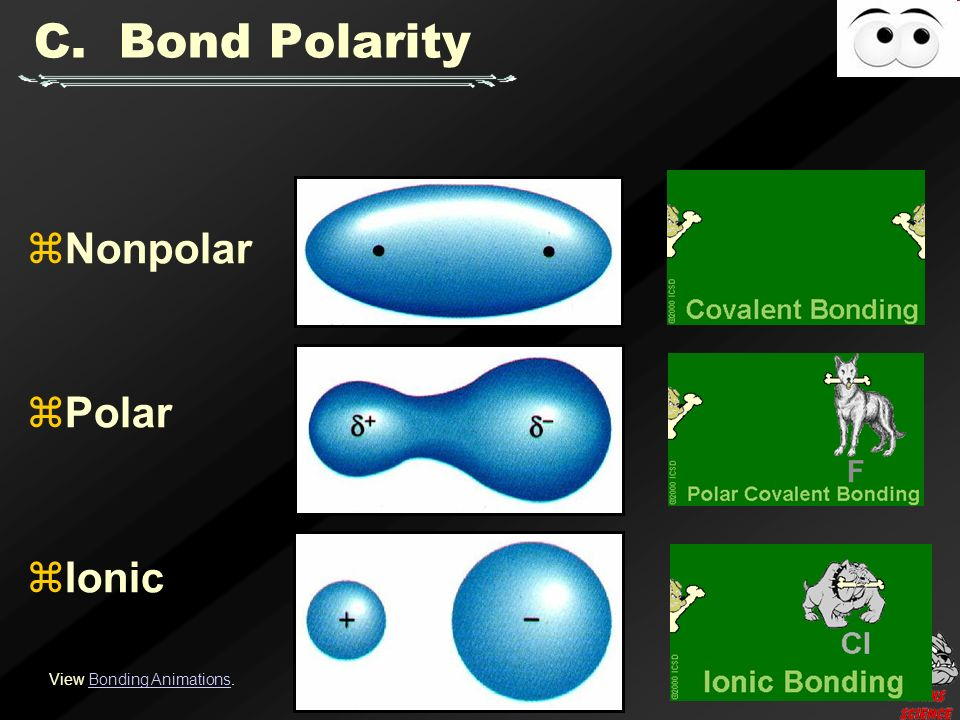  Nonpolar  Polar  Ionic View Bonding Animations.Bonding Animations C. Bond Polarity