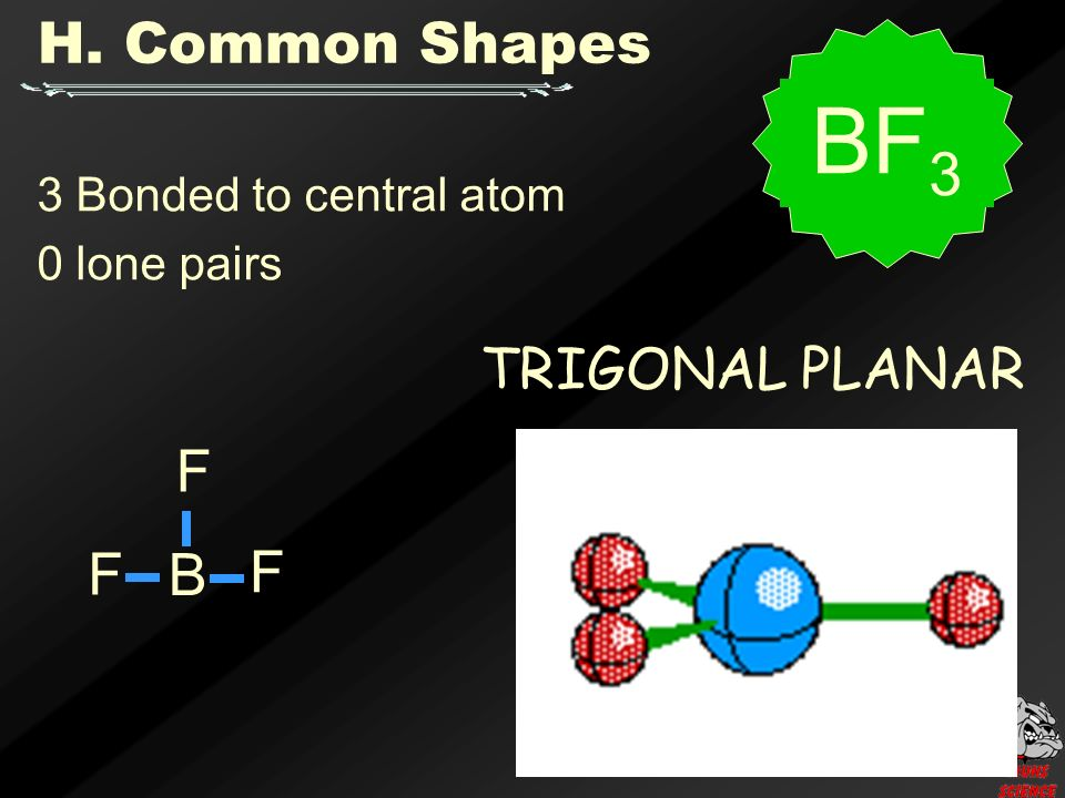 3 Bonded to central atom 0 lone pairs TRIGONAL PLANAR H. Common Shapes B F F F BF 3
