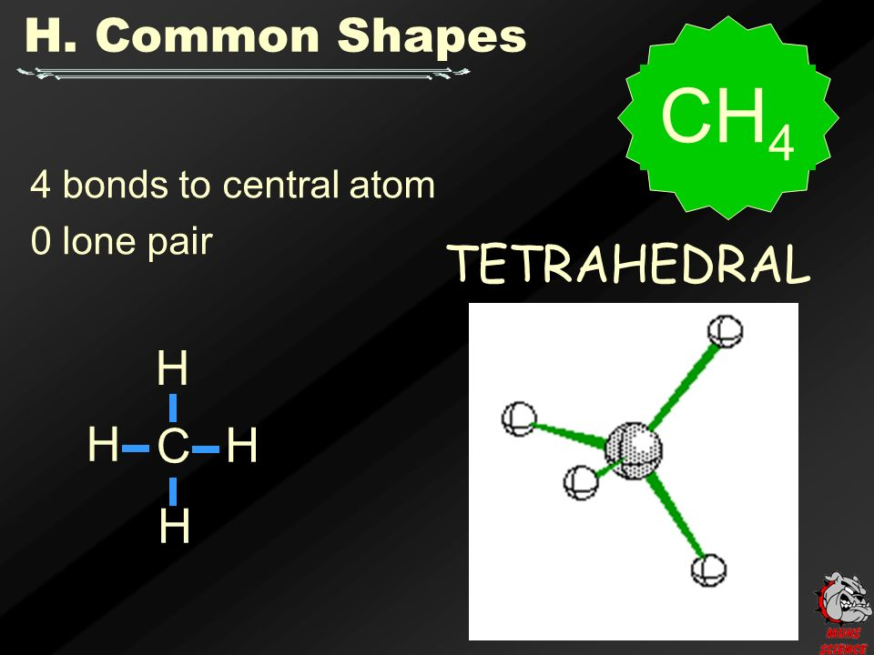 4 bonds to central atom 0 lone pair TETRAHEDRAL H. Common Shapes C H H H H CH 4