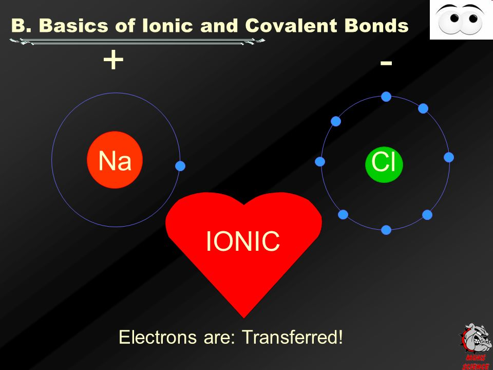 B. Basics of Ionic and Covalent Bonds Na Cl + - IONIC Electrons are: Transferred!
