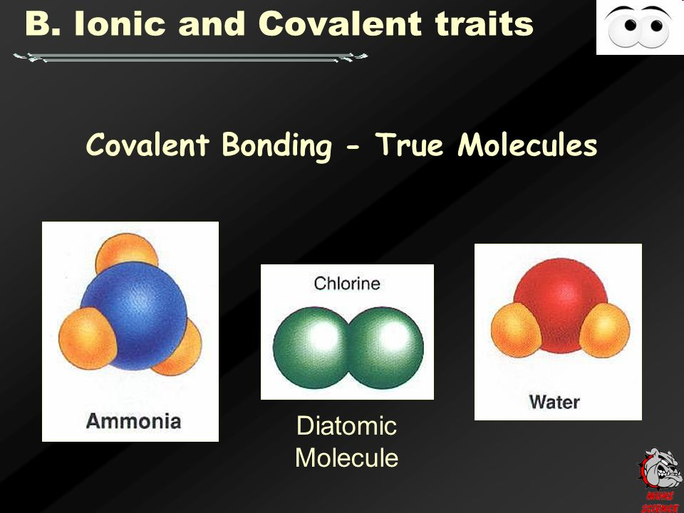 Covalent Bonding - True Molecules B. Ionic and Covalent traits Diatomic Molecule