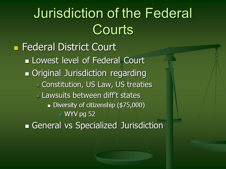 Jurisdiction of the Federal Courts Federal District Court Federal District Court Lowest level of Federal Court Lowest level of Federal Court Original Jurisdiction regarding Original Jurisdiction regarding Constitution, US Law, US treaties Constitution, US Law, US treaties Lawsuits between diff't states Lawsuits between diff't states Diversity of citizenship ($75,000) Diversity of citizenship ($75,000) WYV pg 52 WYV pg 52 General vs Specialized Jurisdiction General vs Specialized Jurisdiction