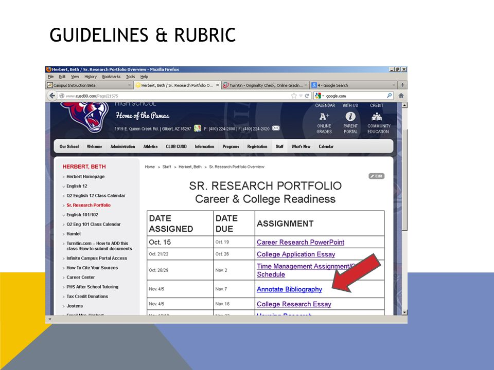GUIDELINES & RUBRIC