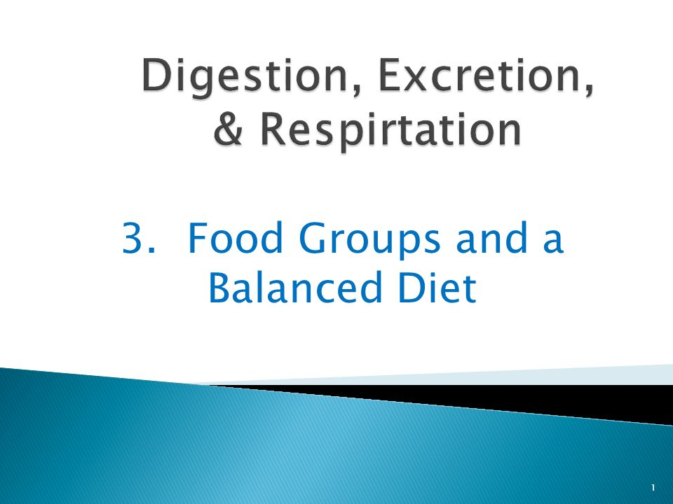 3.Food Groups and a Balanced Diet 1
